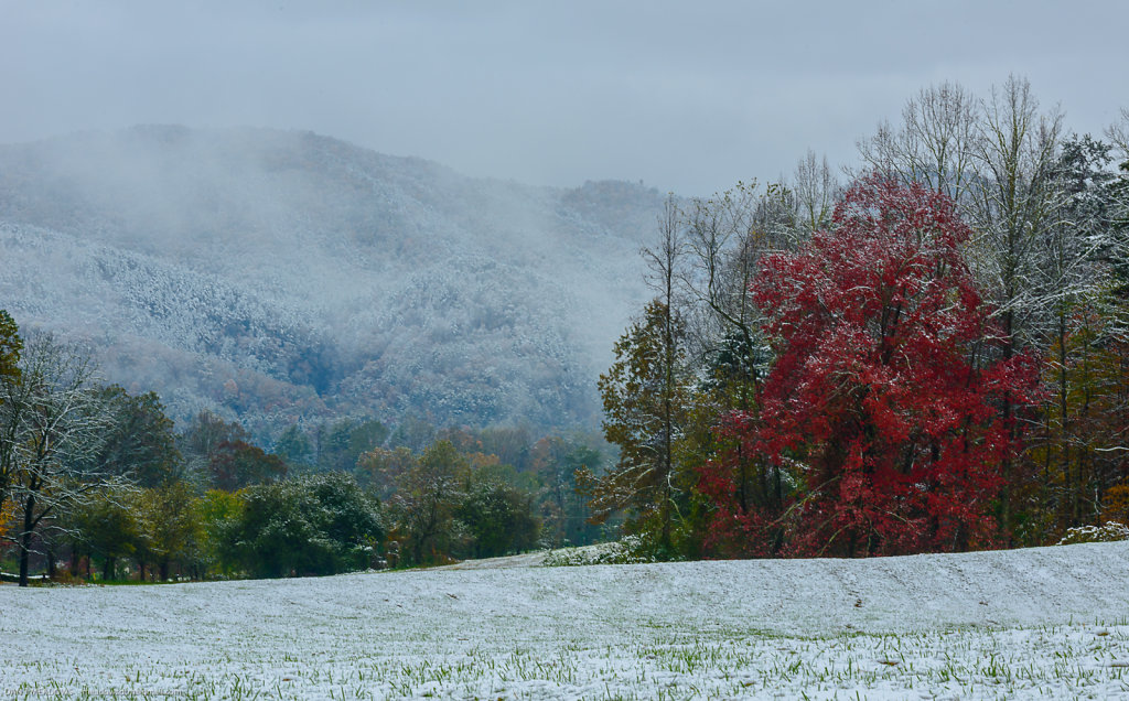 Winter Collides with Fall