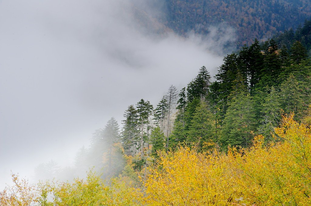 Fall in the Clouds